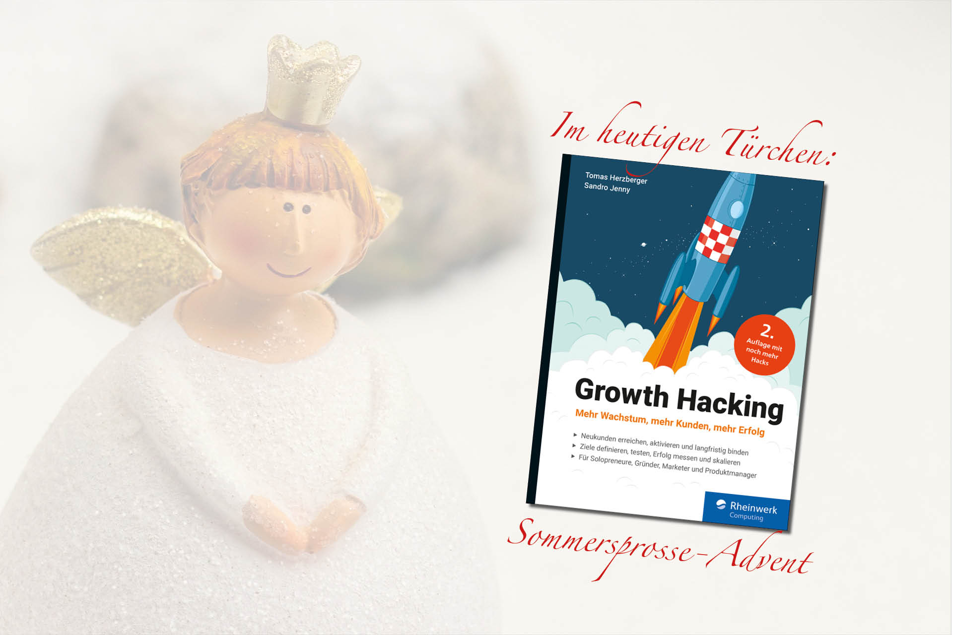 Buchcover: Growth Hacking